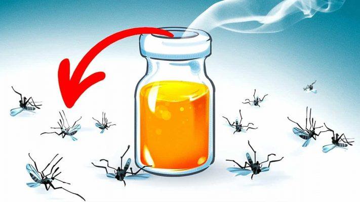 Cách diệt muỗi